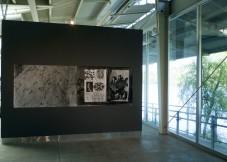 Animals, DiRosa Foundation, Napa