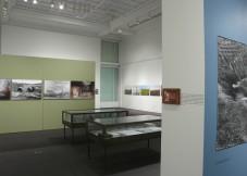 Ghostpile, Installation Stanford Art Gallery, Part 2