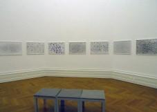 Swarm, Detail of Installation, Le musée d'art et d'histoire, Neuchatel